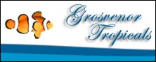 Visit Grosvenor Tropicals website
