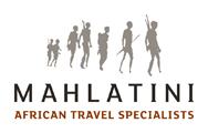 Visit Mahlatini African Travel website