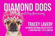 Diamond Dogs Dog Grooming & BoutiqueLogo